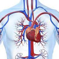 Kardiolog w Medical Fitness Warszawa