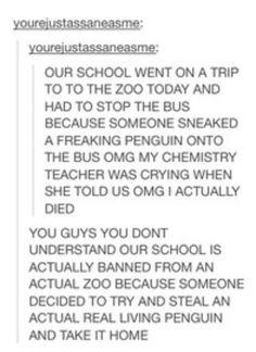Oh my god a penguin!!!!!