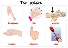 Greek Language, Language Lessons, English Class, Body Parts, Toddler Activities, Baby Care, Human Body, Preschool, Teaching