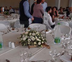 σύνθεση με φύλλωμα ελιάς σε βάσεις απο θαλασσοξυλα για τραπέζια δεξίωσης...Δεξίωση | Στολισμός Γάμου | Στολισμός Εκκλησίας | Διακόσμηση Βάπτισης | Στολισμός Βάπτισης | Γάμος σε Νησί & Παραλία