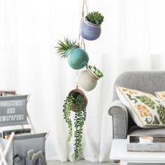 Hanging Succulents, Succulent Pots, Hanging Planters, Growing Succulents, Sunroom Decorating, Desert Colors, Decorated Flower Pots, Pot Sets, Small Plants