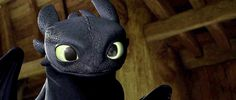 "I love that Toothless' train of thought was, ""Alright I'm gonna wake him up by making weird faces at him. I am a genius."" XD"