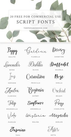 20 stunning commercial fonts for your craft projects . - 20 stunning commercial fonts for your craft projects – – - Fuentes Silhouette, Polices Cricut, Wedding Invitation Fonts, Calligraphy Invitations, Script Fonts Free, Free Calligraphy Fonts Download, Free Fonts Download, Free Typography Fonts, Cricut Wedding Invitations