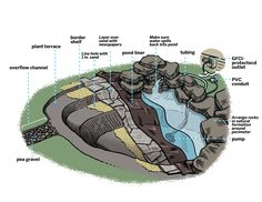How to create a free-form backyard pond in just six hours - Abbie Grubbs - HOME Pond Landscaping, Landscaping With Rocks, Landscaping Software, Tropical Landscaping, Backyard Water Feature, Backyard Ponds, Backyard Ideas, Koi Ponds, Backyard Stream