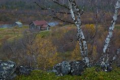 These photos are copyrighted by the photographer and may not be used without permission. Lapland Finland, Houses, Vacation, Country, Places, Photos, Homes, Vacations, Pictures