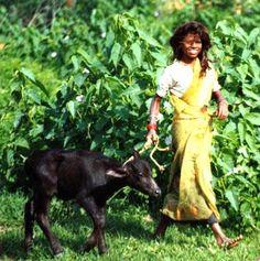 INDIA  (Author: Robert Panadès)