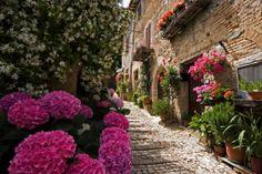 http://www.bestsmalltownsitaly.com/town/montefalco-umbria-center/