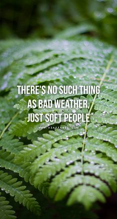There's no such thing as bad weather. Just soft people. Fitness Inspiration Quotes, Fitness Quotes, Fitness Motivation, Workout Quotes, Study Motivation, Quotes Motivation, Best Quotes Of All Time, Quotes To Live By, Life Quotes