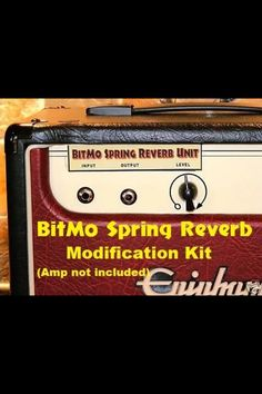Epiphone Valve JR Tube Amp can be converted into a stand alone tube reverb unit with the Spring Reverb kit from BitMo. I just bought one.