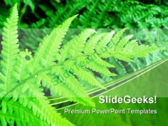 Green Fern Nature PowerPoint Templates And PowerPoint Backgrounds 0411 #PowerPoint #Templates #Themes #Background