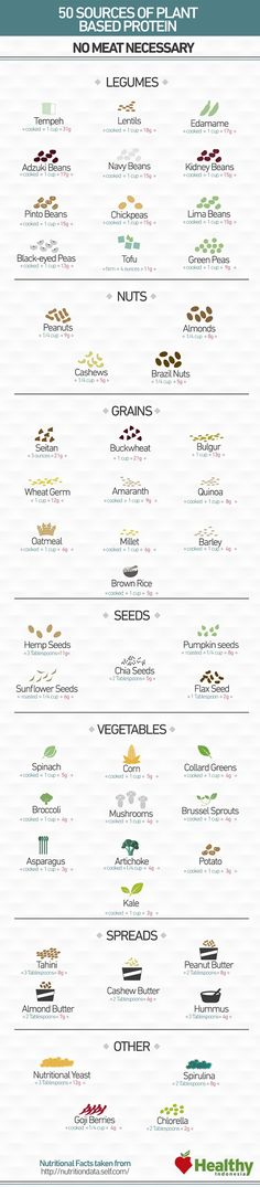 50 Superb Plant-Based Protein Sources #plantbased @plantpowerz