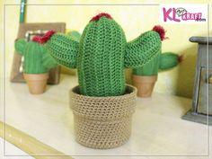 cactus_caja_1