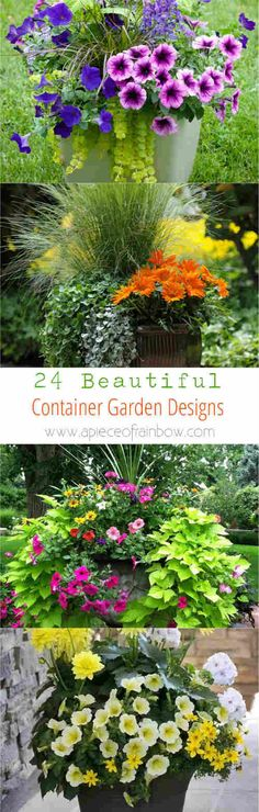 24 Beautiful Container Garden Designs