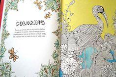 Libro Para Colorear Anti Stress Ofrece Una Divertida Y Creativa Terapia A Los Adultos