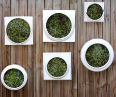 Etsy Wednesday: Upcycled Pair of Living Walls