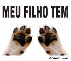 O MEU TB!!! <3 #petmeupet #cachorro #gato #filhode4patas
