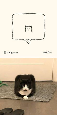 10+ Times 'Stupid Cat Drawings' Made Everyone Laugh With How Accurate They Were Dumb Cats, Stupid Cat, Cat Sketch, Police Dogs, Big Bear, Cat Drawing, Funny Photos, Cat Lovers, Funny Animals