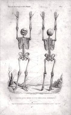 RASPAIL (F.-V.). Histoire naturelle de la santé et de la maladie chez les végétaux et chez les animaux en général et en particulier chez l'homme ; suivie du formulaire pour une nouvelle méthode de traitement hygiénique et curatif. Paris, 1846.