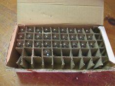 NEW BOX OF 28 6S6/145V CANDELABRA SCREW E12 INCANDESCENT LAMP / LIGHT BULBS, NIB #UnbrandedGeneric