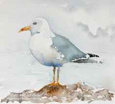 It's Sunday and time for a new watercolor. Today I have a Seagull. I use Winsor Newtons Artists' watercolors and Daniel Smith's extra...