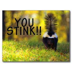 Skunk You Stink Postcards
