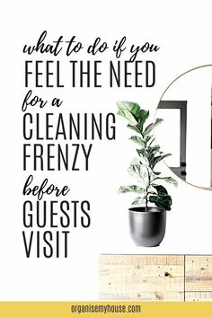 Are you one of the many people who go into a cleaning frenzy when they have guests coming over, or can you let them take you as you are? Eye opening stats.. Do You Feel, How Are You Feeling, Let It Be, House Cleaning Tips, Cleaning Hacks, Guest Room Essentials, Household Chores, When You Know, Stress Free