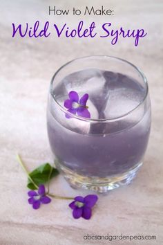 Beverage Recipes: How to Make Wild Violet Syrup