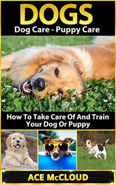 Dogs: Dog Care: Puppy Care: How To Take Care Of And Train Your Dog Or Puppy (The Essentials For Dog Care & Puppy Care Along With Training Diet  & Potty Training Techniques) All You Need To Know About Caring For & Training Dogs and Puppies! *** LIMITED TIME OFFER! Over Read  more http://dogpoundspot.com/dogs-dog-care-puppy-care-how-to-take-care-of-and-train-your-dog-or-puppy-the-essentials-for-dog-care-puppy-care-along-with-training-diet-potty-training-techniques/  Visit http: