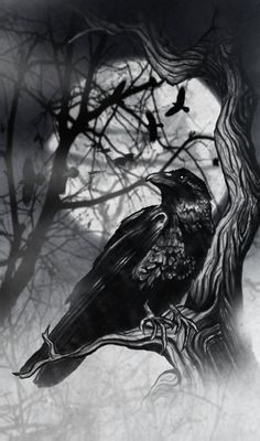 Moon covering upper shoulder, raven ready to lift off with mouth slightly open. I like the depth of the trees w/ravens behind the one in front. Raven And Wolf, Quoth The Raven, Crow Art, Raven Art, Rabe Tattoo, Tattoo Bauch, Viking Tattoos, Crow Tattoos, Hand Tattoos