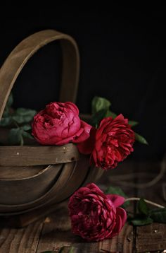 Still Life photo by 尹丹 Love Rose Flower, Beautiful Rose Flowers, Beautiful Flowers Wallpapers, Peony Flower, Pretty Flowers, Flower Art, Flower Background Wallpaper, Flower Phone Wallpaper, Flower Backgrounds