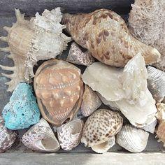 Treasure hunt #sheptonmallet #fleamarket #mymonthofsundays #junk #antiques #vintage #interiors #styling #coldbutsunny #englishwinters by erinallisonclaire1