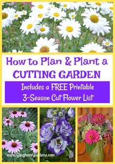 flower garden Learn How to Grow a Cutting Garden, including how to design a cutting garden, the best flowers for a cutting garden and tips for keeping cut flowers looking great. Includes a free printable 3 Season Cutting Garden Flower List Flower Garden Plans, Cut Flower Garden, Flower Garden Design, Beautiful Flowers Garden, Amazing Flowers, Beautiful Gardens, Flower Gardening, Cut Garden, Flowers For Cutting Garden