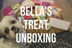 Bella's Pet Treater Unboxing - ErinTheInsomniac