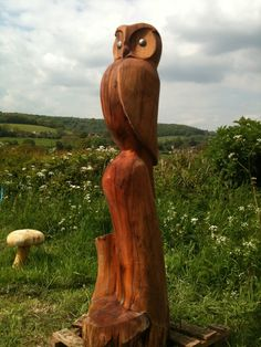 applewood owl chainsaw carving . | by rob beckinsale
