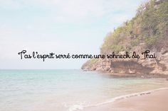 Booba Quote - Bienvenue à Bord, Batârd ! Quotations, Beach, Water, Quotes, Outdoor, Sweet Words, Green Houses, Humor, Gripe Water