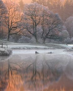 """5,416 Likes, 918 Comments - 〰Wolfypic〰 (@wolfypic) on Instagram: """". River Brathay ______ For those of you that saw my story yesterday, this was a frame from it. It…"""""""