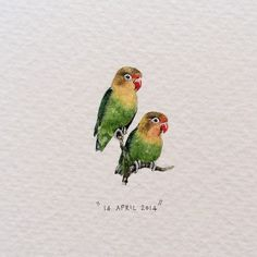 Day 104 : Fischer's Lovebirds | Agapornis Fischeri. One of over 3000 bird species found at the World of Birds, the largest bird park in Africa.   17 x 26 mm. #365postcardsforants #miniature #watercolour #art #wdc624 #lovebirds #lovecapetown #worldofbirds #houtbay #capetown