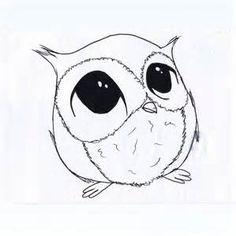 Cute Owl Drawings - Bing images