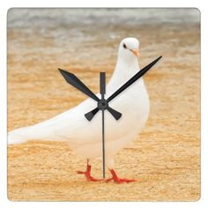 Beautiful White Pigeon Bird Square Wall Clock - photo gifts cyo photos personalize
