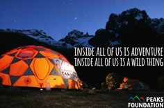 Find the wild thing inside of you! Outdoor Logos, Outdoor Gear, Pine Forest, Girls Camp, Natural Life, Travel Quotes, Motivation Inspiration, The Great Outdoors, Backpacking