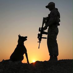 Working dogs have natural talents that are carefully honed with intensive training to perform jobs that help humans. Military Working Dogs, Military Dogs, Military Photos, Military Art, Military Couple Pictures, Ghost Soldiers, Indian Army Wallpapers, Army Pics, Military Drawings