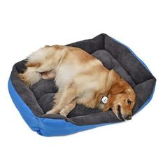 New cheap pet gift uploaded at SketchGrowl: Warming Dog Bed Gifts For Pet Lovers, Pet Gifts, Dog Lovers, Cheap Dog Beds, Cheap Pets, Portraits From Photos, Pet Portraits, Baby Car Seats, Dog Products
