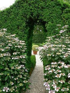 Take a splendid walk. Path covered by greens and white