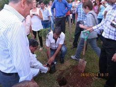 Plantación del Retoño de la Higuera Sarmiento