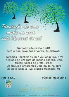 Na'amat, Hebraica e KKL Brasil se unem para comemoração de Tu Bishvat – O Ano Novo das Árvores no dia 04 de fevereiro.