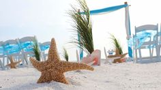Grasses, conch shells and starfish line the aisle