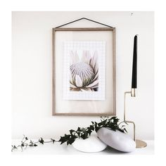 """Sugar Bush"" Protea Print, Nature Prints, Botanical Wall Art, Photography Print, Scandinavian Print, Protea Flower Print, Nature photography, Floral #homedecorideas #homedecoronabudget #homedecordiy #homedecorideasmodern #homeoffice #homedecor #homeideas #wallart #walldecor #wallartdiy  #art #print #digital #natureprint #naturephotography #photographyprint #naturewallart #scandinavianmodern #scandinavianprint"