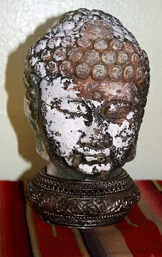 Cement Buddha Head after one year in a water trough