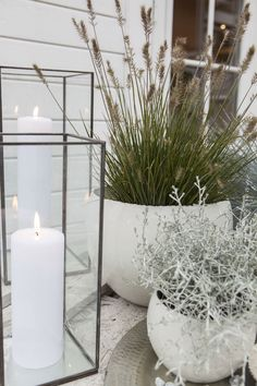 Ornamental grass, silver wreath and lanterns create a nice autumn atmosphere at the entrance hall www.no/ - Tina Carstensen - Dekoration Balcony Garden, Garden Pots, Outside Living, Outdoor Living, Back Gardens, Outdoor Gardens, Plant Design, Garden Design, Terrace Design