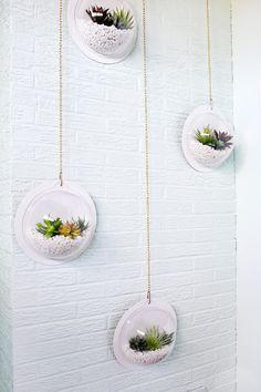 Hanging Terrarium Wall DIY